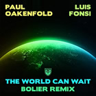 The World Can Wait (Bolier Remix)
