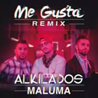 Me Gusta (Official Remix)