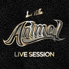 Animal (Live Session)