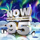 Now Thats What I Call Music! 95