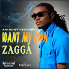Want My Own - Single