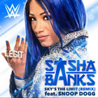 Sky's the Limit (Remix) [Sasha Banks]